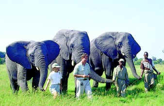 Elephant Sanctuary in the Okavango Delta Botswana